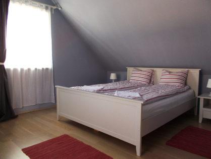 kiado-buzavirag-szoba